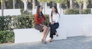 Two women relaxing and having a chat. Two attractive smart young women relaxing and having a chat in an urban square  panoramic view with copyspace stock video footage