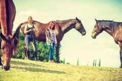 Two women relaxing with horses on meadow Stock Image