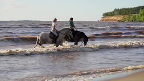 Two women ride on horse at river beach in water sunset light stock video
