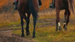 Two women riding horses on the autumn field
