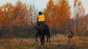 Two women riding horses in the autumn nature - a dog following them