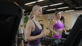 Two women are running on treadmill and talking in modern sports club. Attractive females jogging on aerobic machine and speaking with charming smiles in light stock footage