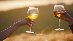 Two women`s hands clink glasses on a background of sunset ears of rye. Cheers. Mid shot stock video footage