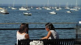 Two women sitting on bench talking (without sound). A view or scene on the water stock video