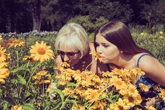 Two women sniffing flowers Heliopsis in the garden. Photo toned. Royalty Free Stock Photos