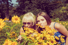 Two women sniffing flowers Heliopsis in the garden. Photo toned. Stock Image