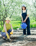 Two  women sows seeds Royalty Free Stock Photo