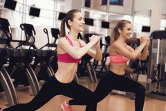 Two women doing aerobical exercises at the gym. They look happy, fashionable and fit. Two women in sportswear doing aerobical exercises at the gym. They look Royalty Free Stock Photo