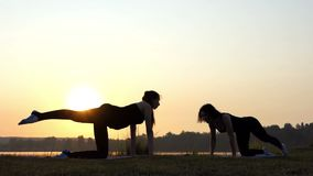 Two Women Stand on All Fours, Raise Their Legs up on a Lake Bank at Sunset. Two Gorgeous Women Stand on All Fours on a Mat, Raise an Arm and Leg Each, at a stock footage