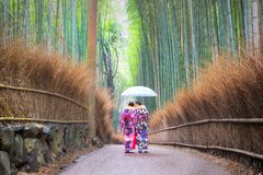 Two women are standing in bamboo groves Royalty Free Stock Image