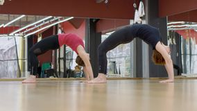 Two women are standing in upforward bow pose on wooden floor modern gym, slow motion. Lady in black sportswear and woman in red top are doing their exercises stock footage