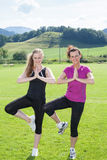 Two Women Standing in Yoga Tree Pose in Field Royalty Free Stock Images