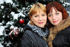 Two women stands near green tree with snow Stock Photography
