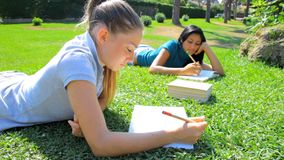 Two women studying in park. Young beautiful women in college studying books stock video