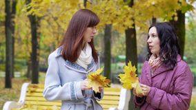 Two women talking in autumn park. Two laughing women talking outdoors in autumn park stock video
