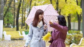 Two women talking in autumn park. Two laughing women talking outdoors in autumn park stock footage