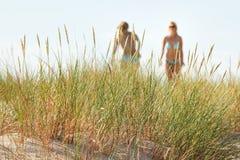 Two women tanning Royalty Free Stock Photos