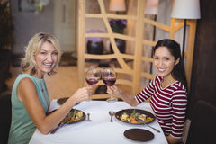 Two women toasting their glasses of red wine Royalty Free Stock Photography