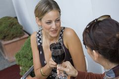 Two women toasting with wine. Stock Photography