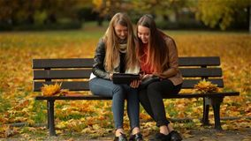 Two Women Using Digital Tablet on the Bench in the Autumn Park, Girl Friends Laughing and Playing on Pad Computer on. Sunny Day, Happy Mood stock video