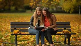 Two Women Using Digital Tablet on the Bench in the Autumn Park, Girl Friends Laughing and Playing on Pad Computer on. Sunny Day, Happy Mood stock footage
