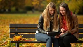 Two Women Using Digital Tablet on the Bench in the Autumn Park, Girl Friends Laughing and Playing on Pad Computer on. Sunny Day, Happy Mood stock video footage