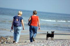 Two women walk with dog Stock Photo