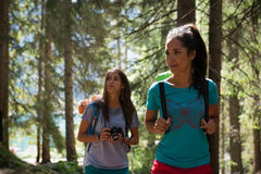 Free Two Women Walking Along Hiking Trail Path In Forest Woods During Sunny Day. Group Of Friends People Summer Adventure Royalty Free Stock Photo - 95100495