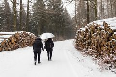 Two women walking in the snow in the forest while snowing stock photo
