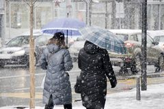 Two women walking under umbrellas in city blizzard and traffic behind them. People under umbrellas walking on sidewalk in heavy snowfall and city street traffic royalty free stock photography