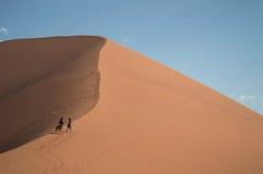Two Women Walking up Dune 45, Desert Landscape, Sossusvlei. Namibia royalty free stock images