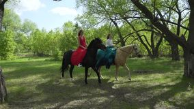 Two women are walking in the woods on horseback.  stock footage