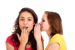 Two women whispering and smiling Stock Photography
