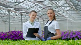 Two women in white coats and black aprons. Scientists, biologists or agronomists examine and analyze flowers and green stock video footage