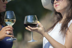 Two women wine tasting in vineyard. Stock Images