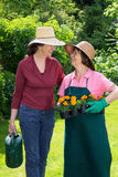 Two women working in a spring garden. Stopping for a friendly chat in their straw sunhats with one holding a tray of flower seedlings and the other a watering stock images