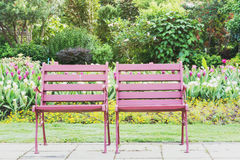 Two wood chairs on the grass Stock Photo