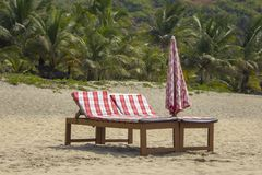 Two wooden beach beds with red mattresses and a folded umbrella on the sand against the backdrop of a blurry green palm jungle stock photos