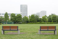 Two wooden benches and grass floor in public park Stock Images