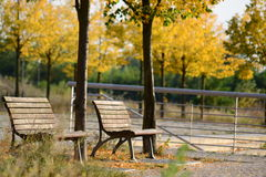 Two wooden benches Royalty Free Stock Photography