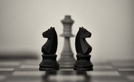 Two wooden chess knights with white queen Royalty Free Stock Photography
