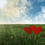 Two wooden hearts with grass, sun and sky Royalty Free Stock Image