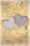 Two wooden hearts in a love nest Stock Images