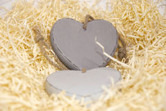 Two wooden hearts in nest Stock Photography