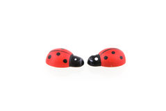 Two wooden ladybirds. Isolated on white background stock photos