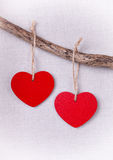 Two wooden red hearts hanging on branch Stock Images