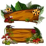 Two wooden signs with many insects Stock Photo