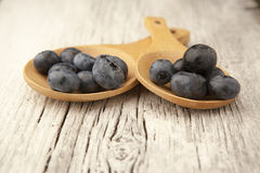 Two wooden spoons with fresh blueberries. A table setting with two wooden spoons with freshly  picked blueberries Royalty Free Stock Photography