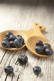 Two wooden spoons with fresh blueberries, white washed background. A table setting with two wooden spoons with freshly  picked blueberries on a rustic Royalty Free Stock Image