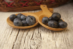 Two wooden spoons with fresh blueberries and wicker basket. A table setting with two wooden spoons with freshly  picked blueberries with a red and brown wicker Royalty Free Stock Images